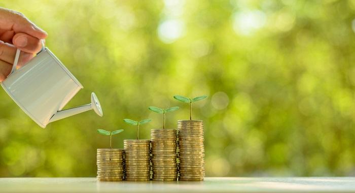 Organic Growth Masterclass: Avira, backed by Investcorp