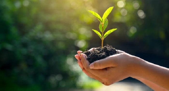 Organic Growth Masterclass: Knjaz Miloš, backed by Mid Europa