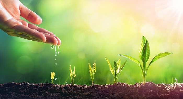 Organic Growth Masterclass: United Group, backed by BC Partners